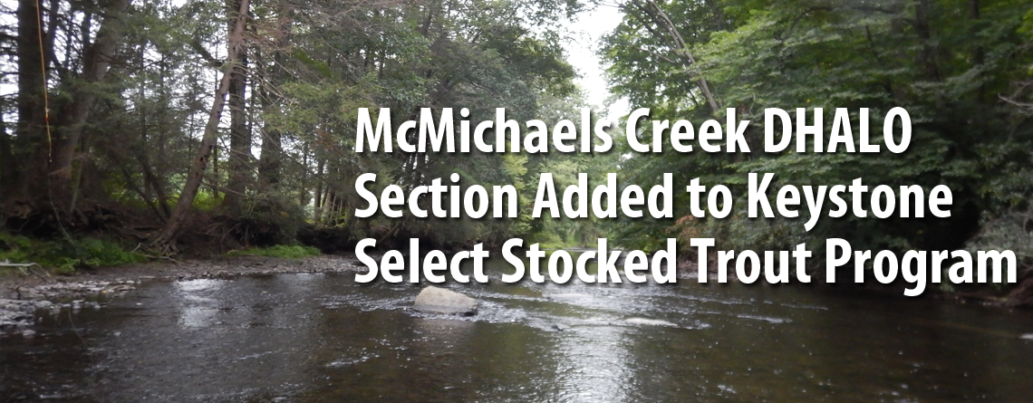 McMichael Creek DHALO Section Among Waters Added to Keystone Select Stocked Trout Program